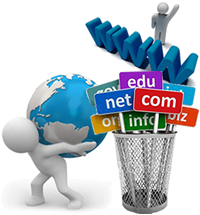 Domain Name & Hosting Service