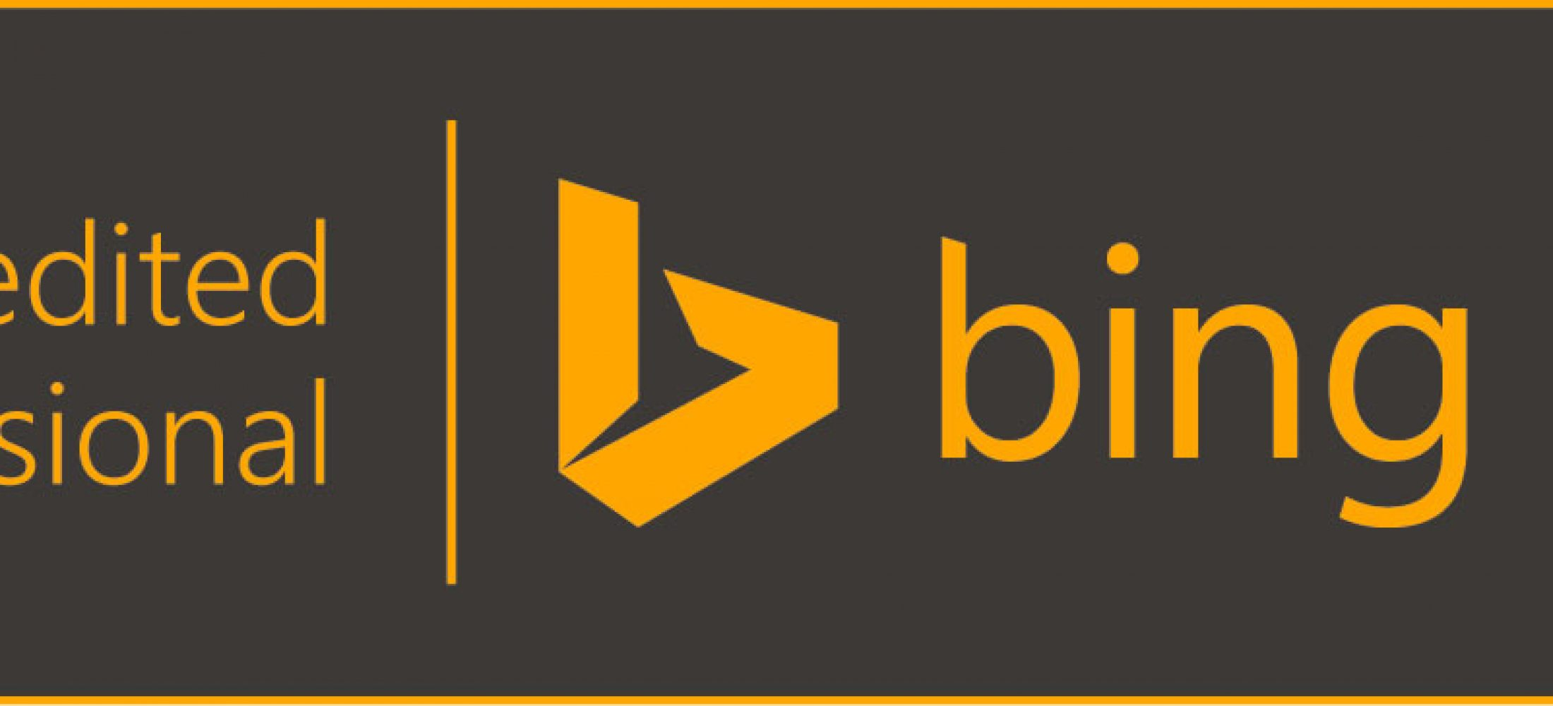 Bing Ads Accredited Professional Company